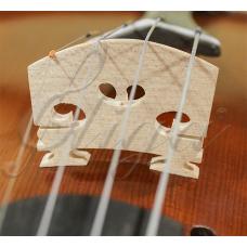 Calus Gliga vioara (student)
