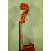 Violoncel 1/2 Gliga (maestru)