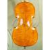 Violoncel 4/4 Gama (profesional), stangaci